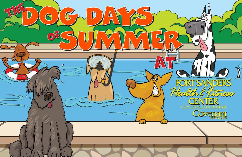 cartoon image of dogs in a pool - one wearing goggles and one in a red float